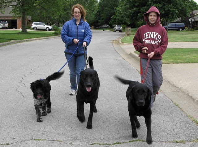Walking For Exercise and Weight Loss: Don't Forget To Take The Dog